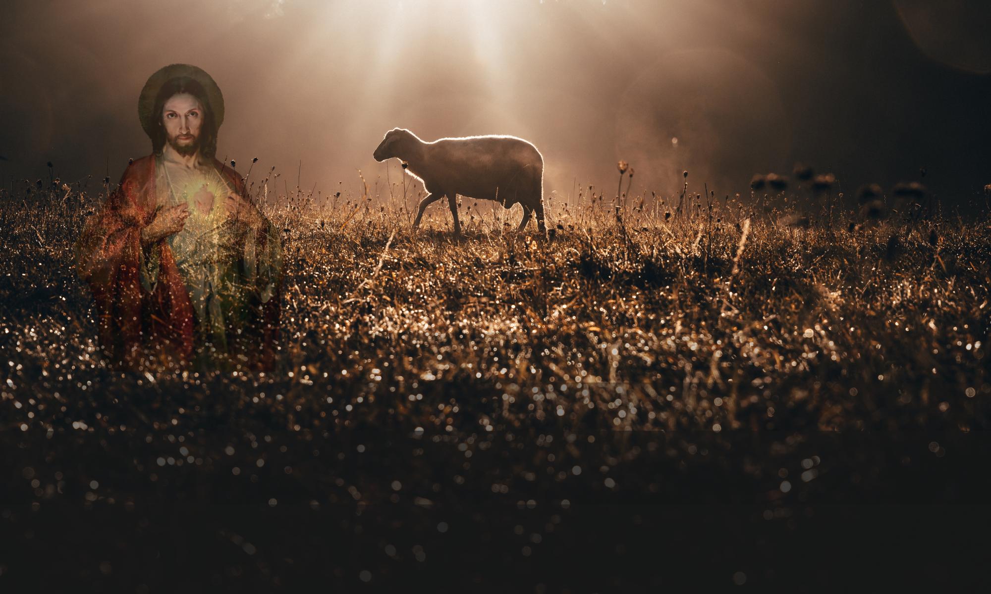 Zgromadzenie Sióstr Pasterek